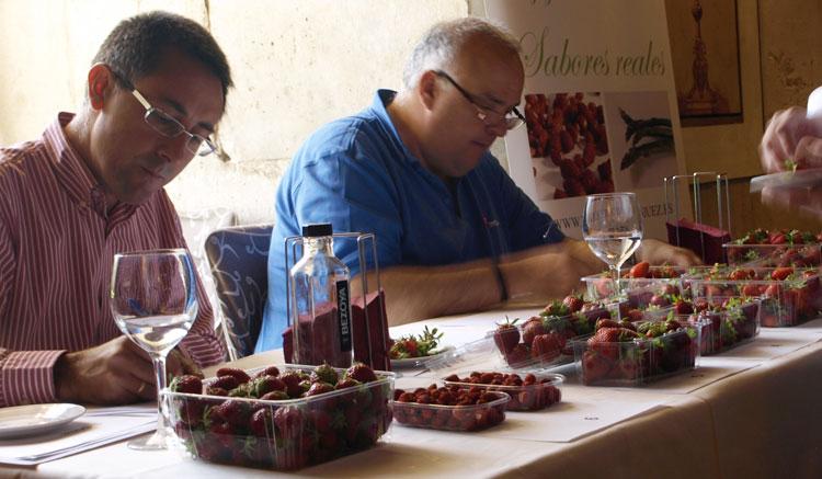 Cata de fresa y fresón